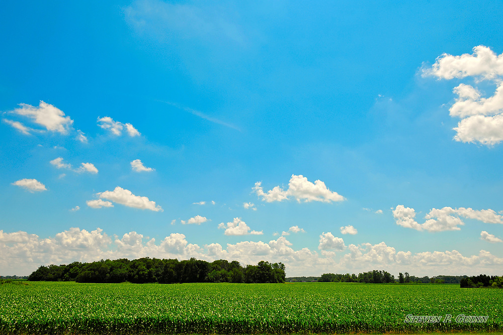 """I captured this landscape image in Rensselaer, Indiana on July 11th, 2019. What caught my eye the most about this scene was how the crops spanning all the way into the background gave it an ocean-like appearance, with the tree formations looking like islands. Further adding to the ocean-like appearance was how the clouds were lined up, small, altocumulus cloud formations up close and large, numerous cumulus clouds spanning across the background. I used a circular polarizer lens filter to reduce the glare from the sun in the atmosphere to darken the blue sky and make it more vivid. I also wanted to include the tree formations because they were producing great shadows that contrast with the lighter colors throughout the entire image. When I created this image, I made it to give a peaceful, relaxing feeling.   <br /> <br /> Printed on Hahnemühle German Etching paper. Limited to 100 productions per size.<br /> <br /> Framed prints are available in 18"""" x 12"""", 24"""" x 16"""", 30"""" x 20"""", 36"""" x 24"""", 45"""" x 30"""", and 60"""" x 40"""" sizes."""