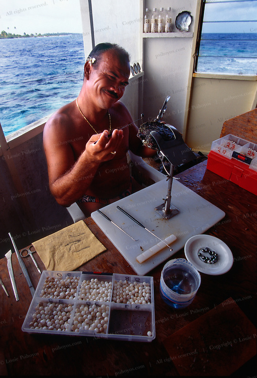 Grafter inspects pearl on a small Manihi pearl farm.