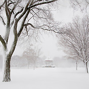 The town green in Wakefield, MA has not visitors during a major blizzard.