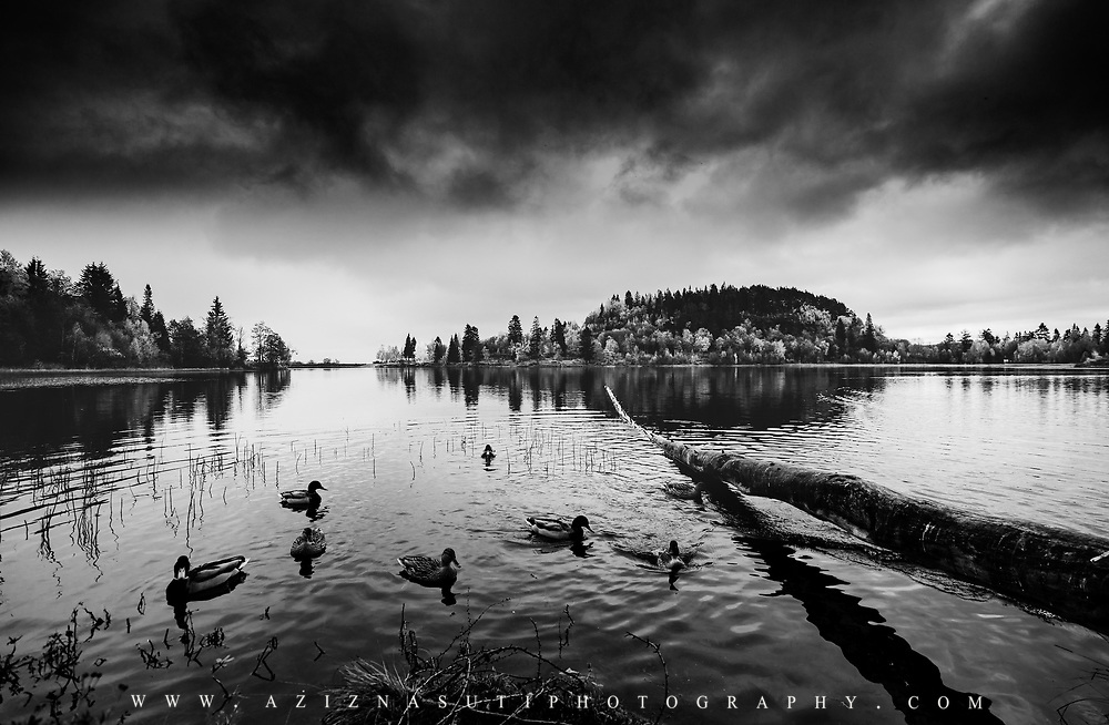 www.aziznasutiphotography.com                                     This is a beautiful view from Theisendammen lake in bYmarka Trondheim