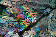 Sugar and salt crystals on glass, viewed at the microscope in polarized light