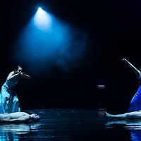 Members of the Yvette Bozsik company perform during a dress rehearsal of the piece Antigone choreographed by Yvette Bozsik in Budapest, Hungary on November 12, 2014. ATTILA VOLGYI