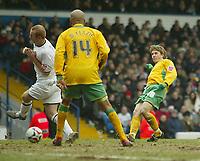 Photo: Aidan Ellis.<br /> Leeds United v Norwich City. Coca Cola Championship. 11/03/2006.<br /> Norwich's Paul McVeigh scores the second goal
