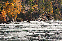 LeHardys Rapids on the Yellowstone River.  Yellowstone National Park, Wyoming, USA.