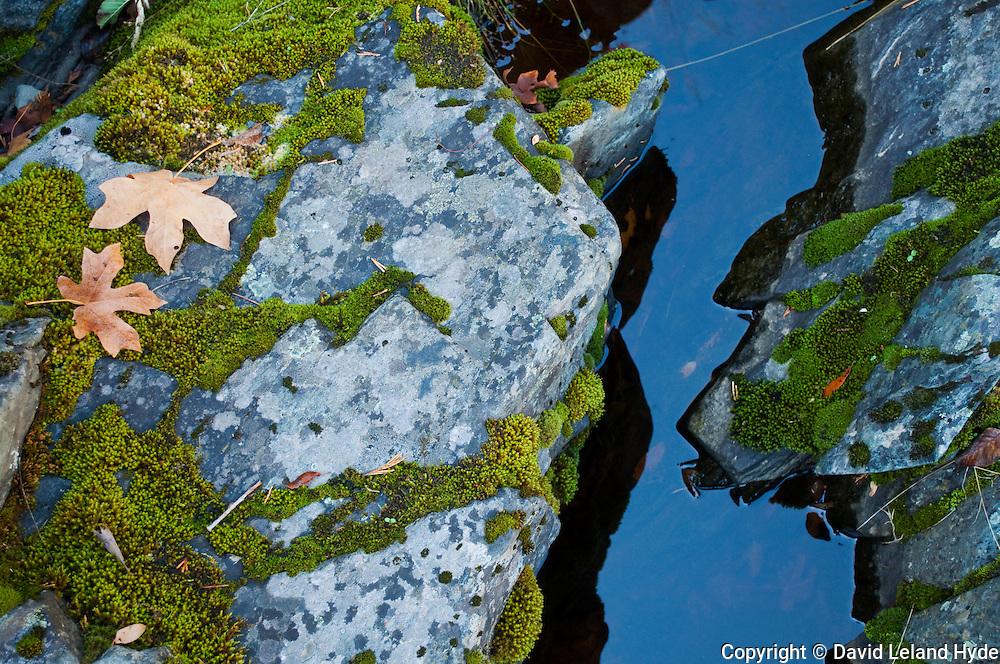 Granite, Pool, mossy rocks, Maple Leaves at Indian Falls near Indian Creek, Sierra Nevada Mountains, California, copyright 2011 David Leland Hyde.