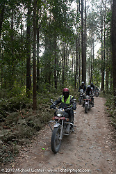 Mohamad Khurshid riding out through the forest from the Kusma Gyadi Bridge on Day-7 of our Himalayan Heroes adventure riding from Tatopani to Pokhara, Nepal. Monday, November 12, 2018. Photography ©2018 Michael Lichter.