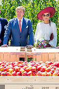 Koning Willem-Alexander en koningin Maxima in de boomgaard van Koninklijke FruitMasters tijdens het streekbezoek aan de Betuwe. <br /> <br /> King Willem-Alexander and Queen Maxima in the orchard of Royal FruitMasters during the regional visit to the Betuwe.