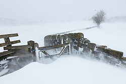 © London News Pictures. 23/03/2013 . Blizzards cause huge snow drifts on farm land in Hadfield, Derbyshire. The UK has been hit by heavy snow and flood alerts. Photo credit: Duncan Fawkes/LNP