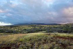 Lenai Landscape