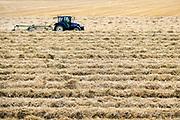 Nederland, Kekerdom, 1-8-2019Een boer in de Ooijpolder rijdt met een trekker door het restafval van de graanoogst. Het wordt gebruikt als stro . Dit kan op verschillende manieren gebruikr worden. Een ervan is als ondergrond in de stal waarna het na vermengd te zijn met uitwerpselen, vruchtbare stalmest wordt.Bij het maaidorsen van graan blijven de plantenstengels met de uitgedorste aren achter op het land. Deze worden tot grote ronde balen opgerold of tot rechthoekige strobalen, stropakken samengeperst. Ook wordt meer en meer stro ondergeploegd.Foto: Flip Franssen