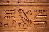 Hieroglyphs in Horus  temple in Edfou in upper egypt