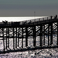 USA, California, San Diego. Crystal Pier, Pacific Beach.