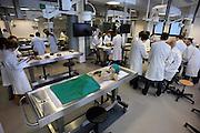 Nederland, Nijmegen, 1-3-2010Studenten medicijnen zijn in de snijzaal van anatomie bezig met een practicum. ALLEEN VOOR VERHALEN OVER MEDISCH ONDERWIJS.Foto: Flip Franssen