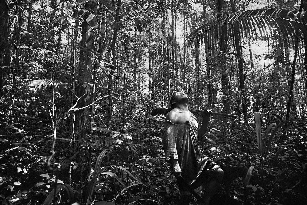 Guyane francaise, Haut-Maroni, zone a acces reglemente.<br /> <br /> Chasse.<br /> Dependants des allocations, les Wayanas restent lies a leur environnement naturel et continuent a vivre dans un systeme relativement autarcique : chasse, peche, culture de manioc dans les abattis et … revenu minimum pour les cartouches et l'essence des pirogues.