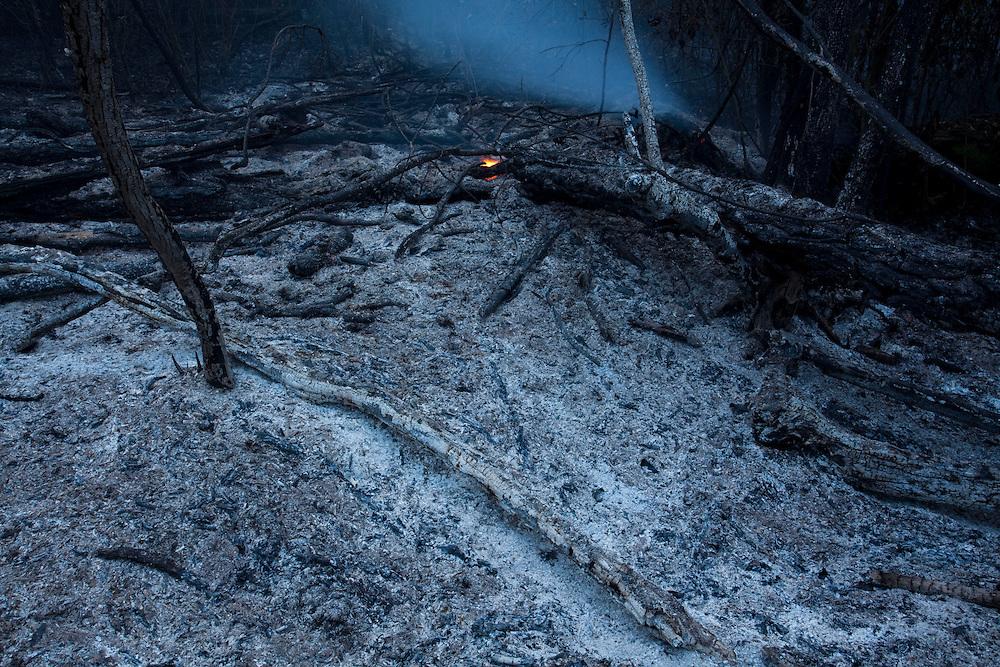 Nova Lima_MG, Brasil.<br /> <br /> Incendio na Reserva Ecologica de Fechos, Nova Lima, Minas Gerais, esse incendio e comum no Brasil na epoca da seca, muitos deles iniciados de forma criminosa.<br /> <br /> Fire in Fechos Ecological Station in Nova Lima, Minas Gerais. This fire is common in Brazil during the dry season, many of them started in a criminal way.<br /> <br /> Foto: JOAO MARCOS ROSA / NITRO