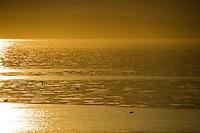 Sunrise over Bar Harbor, Maine.  ©2016 Karen Bobotas Photographer