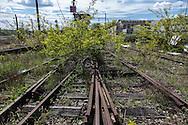 France. Paris 12 ardt, former railway line around paris, la petite ceinture; Industrial wasteland /  la petite ceinture ferroviaire de Paris. Friche industrielle.
