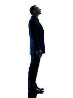 one caucasian business man standing looking up silhouette isolated on white background