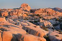 Sunrise over Jumbo Rocks campground, Joshua Tree National Park California