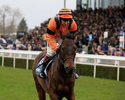 Back To The Hatch ridden by Richard Johnson during the Marstons 61 Deep Midlands Grand National race at Uttoxeter Racecourse.