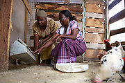 Linna Kinabo teaching another women in her community about poultry farming.<br /> <br /> Linna set up and now runs a poultry business selling both eggs and meat.<br /> <br /> She attended MKUBWA enterprise training run by the Tanzania Gatsby Trust in partnership with The Cherie Blair Foundation for Women.