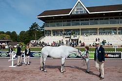 Helen Kearney, (IRL), Mister Cool - Horse Inspection Para Dressage - Alltech FEI World Equestrian Games™ 2014 - Normandy, France.<br /> © Hippo Foto Team - Jon Stroud<br /> 25/06/14