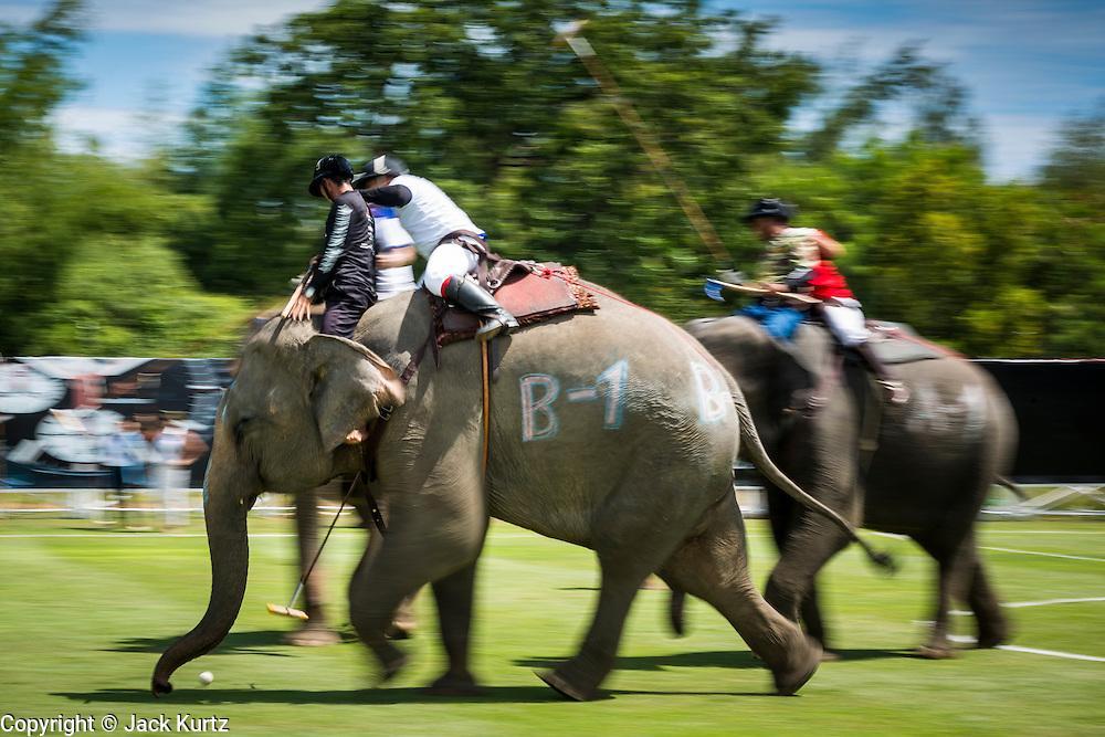 """29 AUGUST 2013 - HUA HIN, PRACHUAP KHIRI KHAN, THAILAND: Elephants charge upfield during the The Devil vs. King Power Duty Free game at the King's Cup Elephant Polo Tournament in Hua Hin. King Power defeated the Devil. The tournament's primary sponsor in Anantara Resorts and the tournament is hosted by Anantara Hua Hin. This is the 12th year for the King's Cup Elephant Polo Tournament. The sport of elephant polo started in Nepal in 1982. Proceeds from the King's Cup tournament goes to help rehabilitate elephants rescued from abuse. Each team has three players and three elephants. Matches take place on a pitch (field) 80 meters by 48 meters using standard polo balls. The game is divided into two 7 minute """"chukkas"""" or halves. There are 16 teams in this year's tournament, including one team of transgendered """"ladyboys.""""    PHOTO BY JACK KURTZ"""