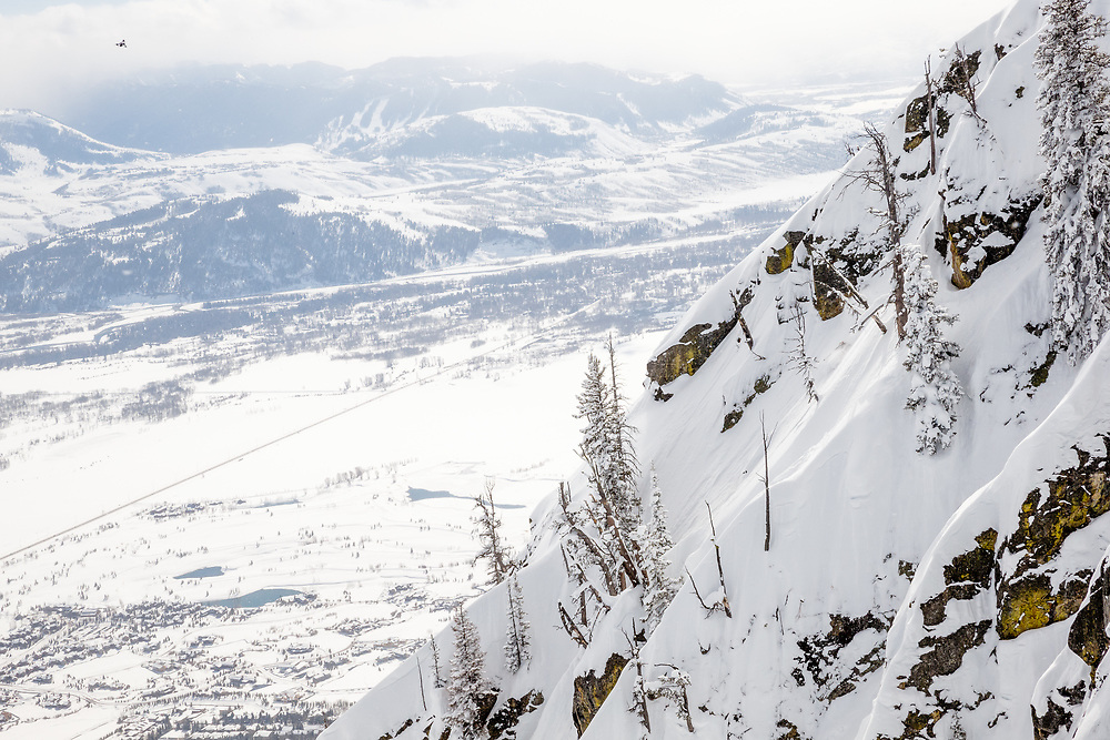 Tigger Knecht skiing inbounds powder at Jackson Hole Mountain Resort.
