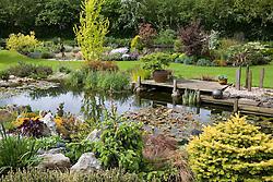 The pond with wooden deck jetty. Decorative slate pillars. Central tree is Ulmus minor 'Dampieri Aurea' syn. U. x hollandica 'Dampieri Aurea', syn. U. hollandica Wredei - Golden Dutch Elm