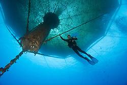 scuba diving worker and 3,000-cubic-meter submersible fish pen installed in open ocean just off Kona Coast to raise Kona Kampachi, Hawaiian yellowtail, aka almaco jack or kahala, Seriola rivoliana, Kona Blue Water Farms, Big Island, Hawaii, USA, Pacific Ocean