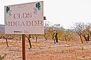 Vineyard. Celler Clos Mogador. Priorato, Catalonia, Spain