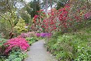 Bodnant Garden - May