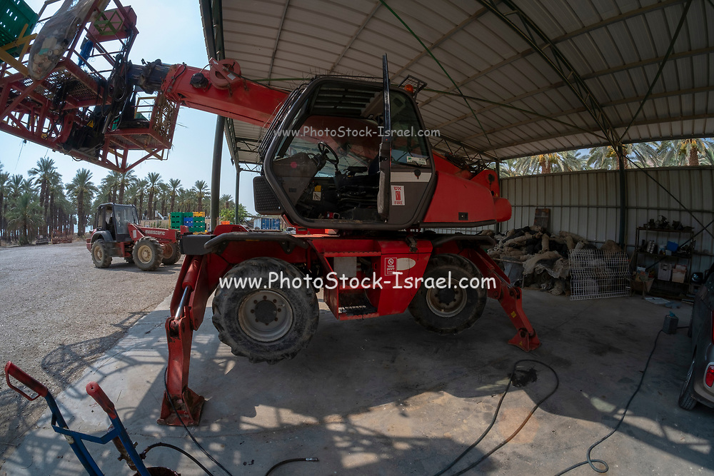 Desert agriculture. Hydraulic platform for picking dates photographed in Israel, Dead Sea region