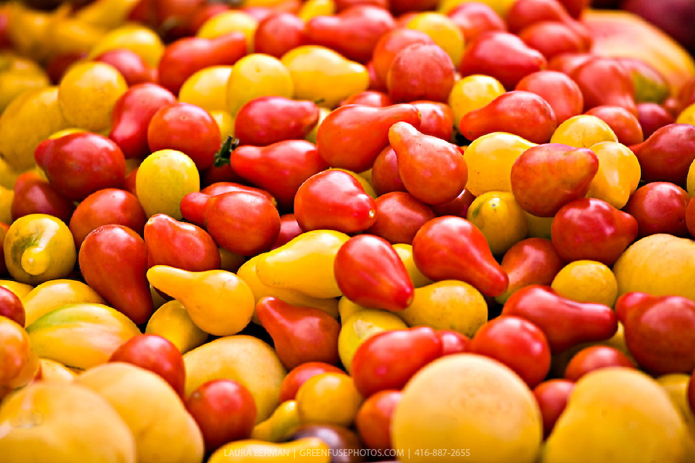 Red and yellow pear tomatoes