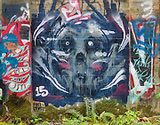 Street art painting in old mill building in Vernonia, Oregon depicts the face of a bear