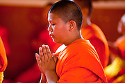 24 JUNE 2011 - CHIANG MAI, THAILAND: Novice monks pray at Wat Phra Singh in Chiang Mai, Thailand. Wat Phra Singh is the most revered Buddhist temple in Chiang Mai because it houses the Phra Singh (Lion Buddha). The exact origin of the Buddha is unknown though it is known to have resided in Buddhist temples in Sukothai, Ayuthaya, Chiang Rai and Luang Prabang before coming to Chiang Mai in approximately 1360. Most Thai boys join the Buddhist clergy, called the Sangha, sometimes for only a few weeks, during their teenage years.    PHOTO BY JACK KURTZ