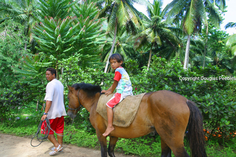 Horse, Puamua, Hiva Oa, Marquesas, French Polynesia (editorial use only, no model release)<br />