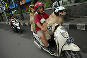 Two Dogs Who Love Ride Motorcycle
