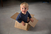 One year old boy happily playing in discarded cardboard box, 1st October 2015, Lagrasse, France.