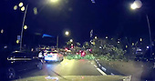 SHOCKING MOMENT GIANT TREE FALLS ONTO MOVING CAR