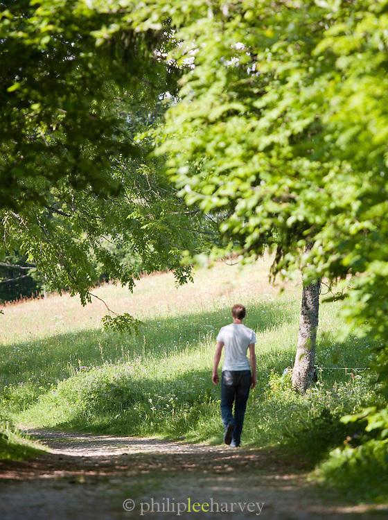 A path through the woods at La Cluse-et-Mijoux, Jura region, Frnace