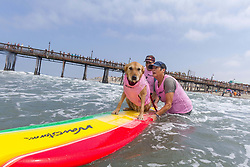 July 29, 2017 - Imperial Beach, CA, US - Surfdog returns to Imperial Beach for the twelfth  year...Barb surfing. (Credit Image: © Daren Fentiman via ZUMA Wire)