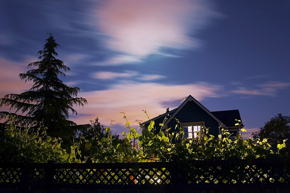 A house, hidden behind a fence and vines, glows invitingly at night in Seattle, Washington.