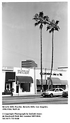 Beverly Hills Psychic. Beverly Hills. Los Angeles. 1996 Film. 9629.16<br /><br />© Copyright Photograph by Dafydd Jones<br />66 Stockwell Park Rd. London SW9 0DA<br />Tel. 0171 733 0108