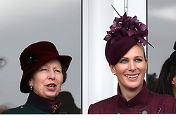 The Princess Royal and Zara Tindall watch the race action during Ladies Day of the 2019 Cheltenham Festival at Cheltenham Racecourse.