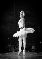 Boston Ballet's Lorna Feijoo performs with the Boston Landmarks Orchestra at the Hatch shell. 31st of August 2011