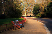 Bench in Battersea Park in London, England, United Kingdom.