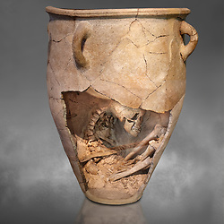 The Minoan clay burial pithos with skeleton in foetal,  Neopalatial period 1700-1450 BC; Heraklion Archaeological  Museum, grey background.<br /> <br /> The body was placed in a foetal postion to aid insertion into the wide mouthed pithos
