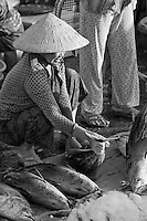 Woman inspecting fish for sale at the Hoi An fish market.