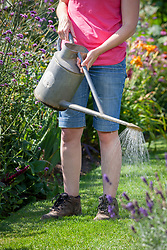 Feeding a lawn using liquid feed from a watering can